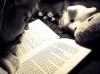 Territorio - Una bambina che legge