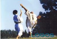 Karate (da internet)