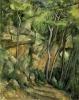 Nel parco di Chateau Noir, Paul Cézanne, 1898-1900
