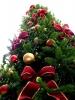Magenta - Un mese insieme per Natale (Foto internet)