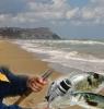 Territorio - Ecco il vademecum del pescatore (Foto internet)