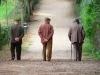Generica - Anziani a passeggio (da internet)