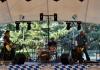 Magenta - Magenta Summer Festival2