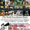 Eventi - Pit Bull protagonisti a Orvieto