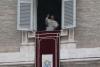 Roma - Un Angelus di Papa Francesco