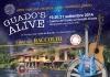 Robecchetto - 'Guado's Alive'