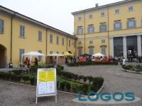 Cuggiono - Mercatini in Villa 2014.01