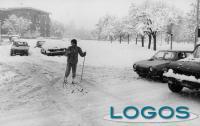 Meteo - La grande nevicata del 1985.01