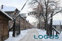 Cultura - Il campo di concentramento di Auschtwitz