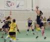 Sport - Gorla Volley vola in B2