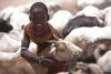 Sociale - Regali solidali per aiutare Haiti
