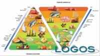 Generica - Piramide alimentare