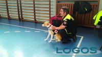 Inveruno - La pet therapy a scuola