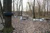 Territorio - Rifiuti abbandonati nei nostri boschi (Foto Eliuz Photography)