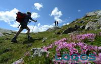 Inveruno - Escursionismo con il CAI (foto da internet)