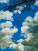 Cuggiono - Mostra 'Non solo nuvole' 2018