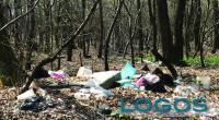 Territorio - Rifiuti abbandonati nei boschi