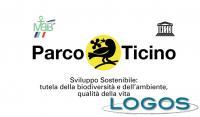 Territorio - Parco del Ticino (Foto internet)