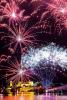 Eventi - Fuochi d'artificio (Foto di Franco Gualdoni)