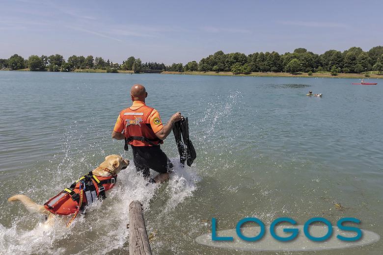 Sociale - I cani salvataggio