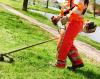 Legnano - Manutenzione del verde (Foto internet)