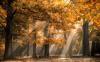 Meteo Sincero - Autunno con colori e luce (da internet)
