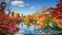 Rubrica Solo Cose Belle - Foliage (da internet)