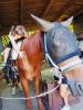 Busto Arsizio - Yoga a cavallo a 'La Bastide'