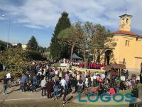 Vanzaghello - La chiesa di Madonna in Campagna (Foto d'archivio)
