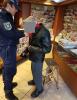 Castano Primo - L'intervento della Polizia locale