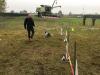 Fiera di San Martino - Agility Dog e Rally Obedience tra le attività al Padiglione Villoresi