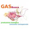 Buscate - 'GASBusca'