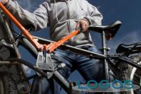 Cronaca - Ladro di biciclette (Foto internet)