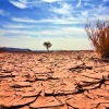 Cuggiono - Cambiamenti climatici