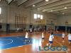 Sport - Pallacanestro (Foto d'archivio)