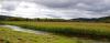 Territorio - Maltempo: manna per le campagne (Foto internet)