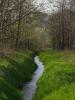 Attualità - Stanziamento per misure forestali (Foto internet)