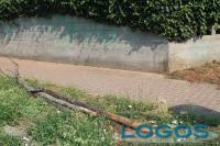 Cuggiono - Altri alberi abbattuti in via Roma