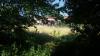 Magenta - Erba incolta in un campo dietro al cimitero