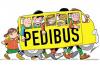 Scuola - Pedibus (Foto internet)