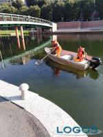 Eventi / Milano - 'Milano Women Rowing Cup'
