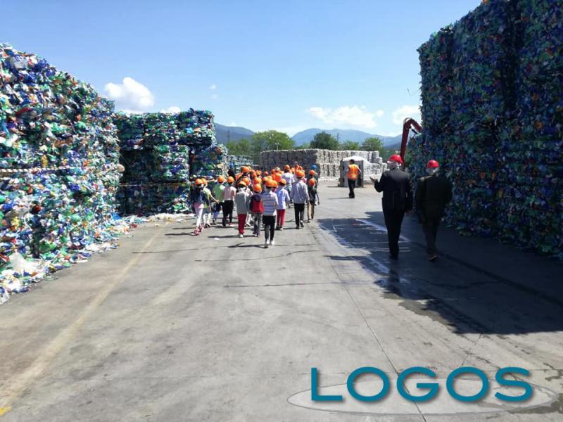 Castano - Educazione ambientale (Foto d'archivio)