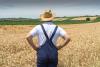 Inchieste - Giovani imprese nei campi (Foto internet)