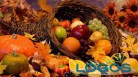 Generica - Sapori d'autunno
