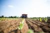 Territorio - La semina autunnale (da internet)