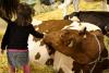 Inveruno - Bambini protagonisti in Fiera (Foto internet)