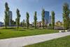 Milano - Alberi in un quartiere moderno