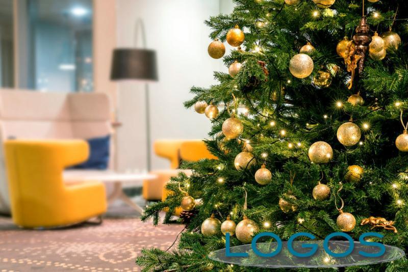 Attualità - Albero di Natale (Foto internet)