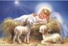 Attualità - Gesù Bambino (Foto internet)