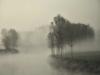 Meteo - Nebbia lungo un canale (da internet)